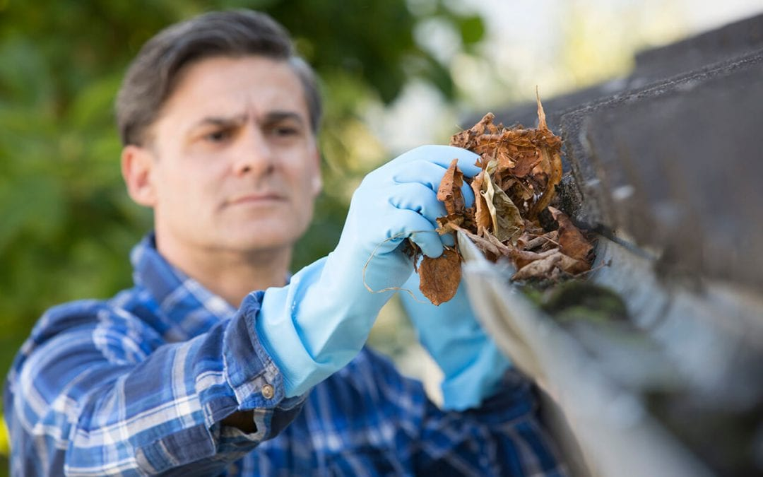 home maintenance tasks include keeping gutters clean